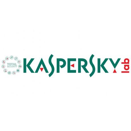 Kaspersky Lab KL4742XAKTS ohjelmistolisenssi/-päivitys 10-14 lisenssi(t) Lisenssi