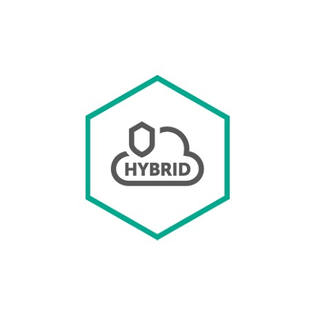 Kaspersky Lab Hybrid Cloud Security Uusiminen